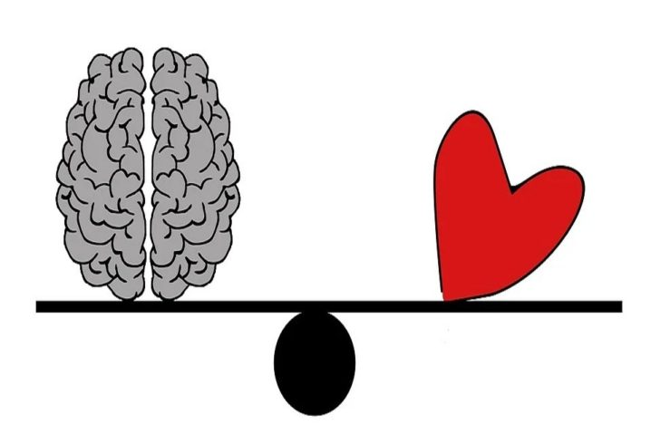 さまよう不倫脳
