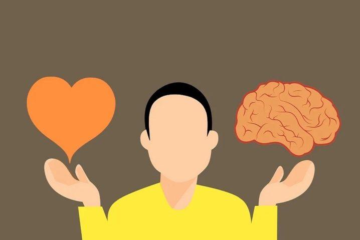 不倫脳は快楽を選ぶ
